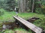 Puchéřský potok pramení pod Chlumem (1 191 m n. m.) a do jeho pramenišť se také zítra podíváme.