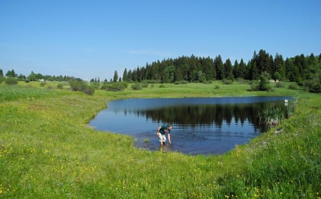 Po zhodnocení teploty vody se letos poprvé vykoupu. Je vedro a koupel mě skvěle osvěží.