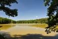 Konopišťský rybník je poněkud bahnitý.