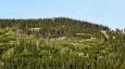 Ptačí kameny vystupují z hřebene za Medvědím dolem. Celá oblast Sedmidolí jasně názvem prozrazuje charakter krajiny okolí Brádlerových boud.