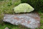Barvy mechu pestře zbarvují kameny.