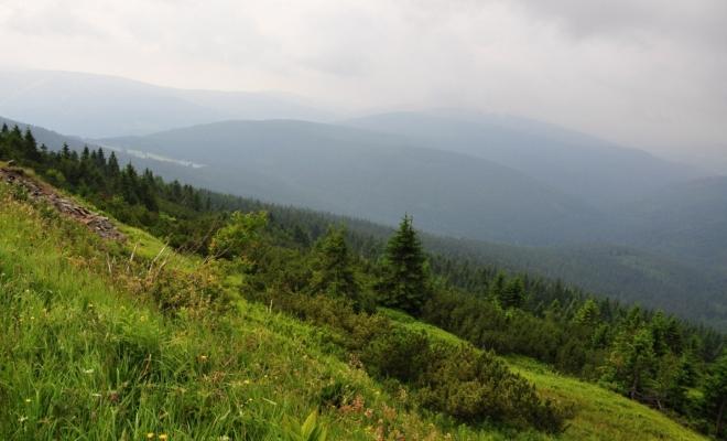 Lesnatý hřeben k Žalému jsme si již prošli. Mlhy jeho vrcholky zahalily neprůhlednou clonou.