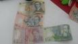 Rumunská měna leu (lei)