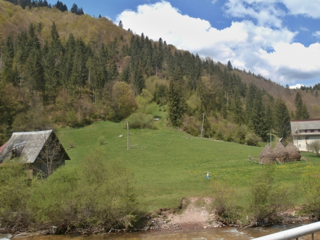 Karpatská krajina
