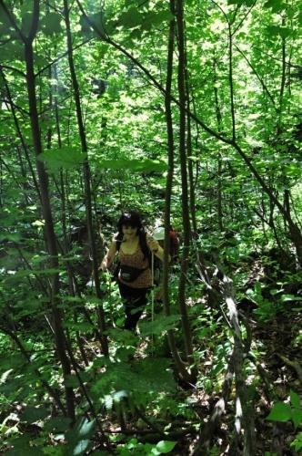 Stoupání na další značku ztěžuje jako džungle zarostlý terén.