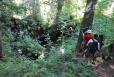 Propast Gemănata leží, podibně jako další propasti, na lesem zarostlé Platoul Carstic Lumea Pierdută.