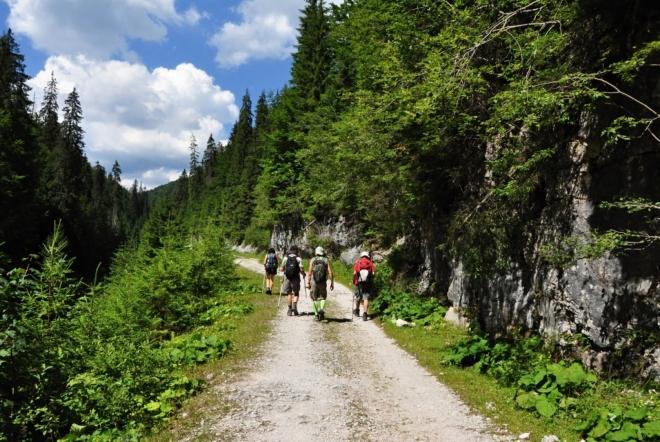 Cesta vzhůru na hřebeny vede širokým údolím.