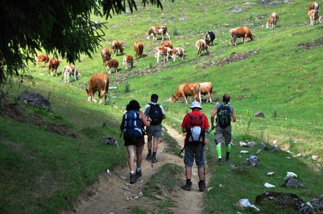 Míříme na planiny u salaší Băliceana.