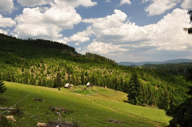 Pohled do doliny Părăul Beliş.