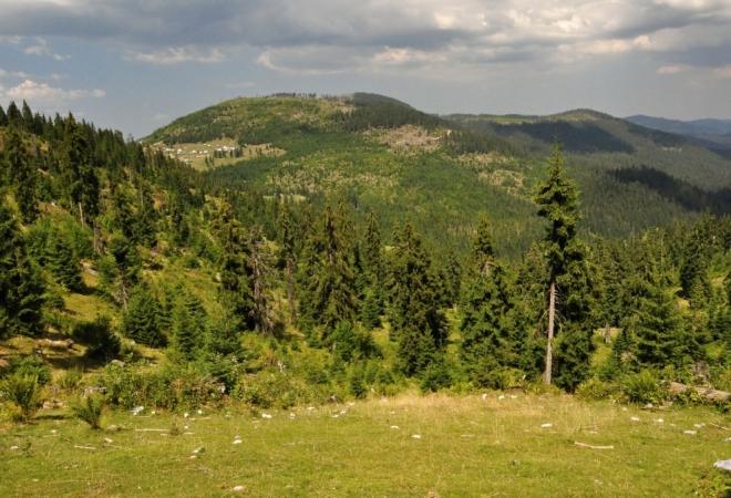 Pohled zpět na Călineasu.