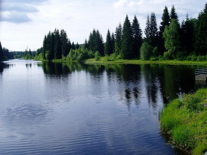 Cestu si s Lukášem kontrolujeme na GPSce a i díky ní nacházíme tu pravou cestu k hrázi Pohořského rybníka. Počasí ujde, voda jakbysmet a tak se trošku i proplaveme.