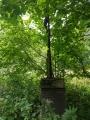 Křížek skrytý v husté vegetaci...