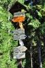 Díky Stožeckému sedlu jsme nijak výrazně neklesli a stoupání na druhou nejvyšší horu Lužických hor - Pěnkavčí vrch, bude snazší...