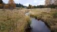 Hamerský potok...