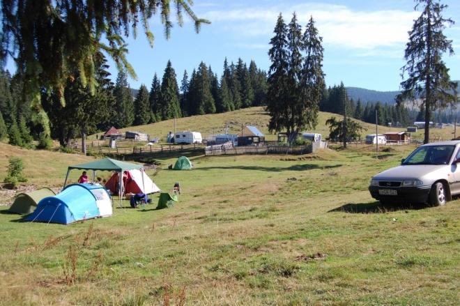 Kempování je na Padisu zdarma, ovšem ne všude se smí stan stavět. Planina se využívá pro pastvu skotu a koní.