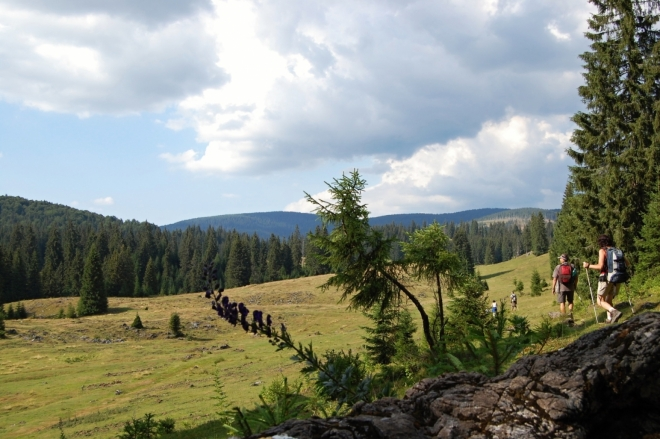 Planina Padis.