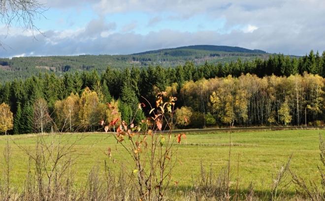 Pohled od Srní k údolí Vydry.