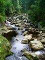 Nutno říct, že spravedlivě. Ale právě proto se naše kroky stáčí od značené cesty na Antígl a razí si cestu podél Popelného potoku.