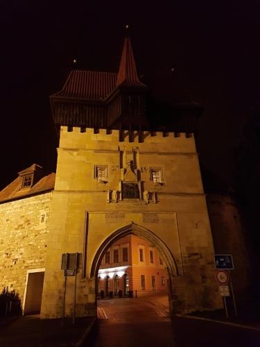 Žateckou bránu zdobí městský znak se symbolickým W (Vladislav Jagellonský) a tři nápisové desky s datací stavby do roku 1500.