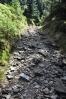 Stezkou vzhůru na Příčnou horu zřejmě v minulosti stoupalo nemálo horníků. Kamenitý úsek tomu napovídá.