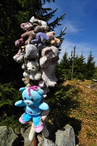 Medvídci medvědího vrchu po dlouhé a studené zimě opustili své brlohy a vyhřívají se v jarním slunci.