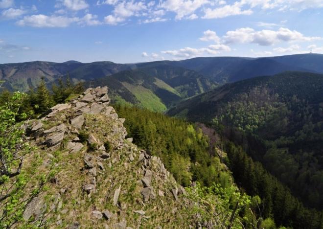 Údolí Borového potoka.