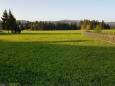 Louky rejvízské ukrývají mokřady a zbytky Malého mechového jezirka.