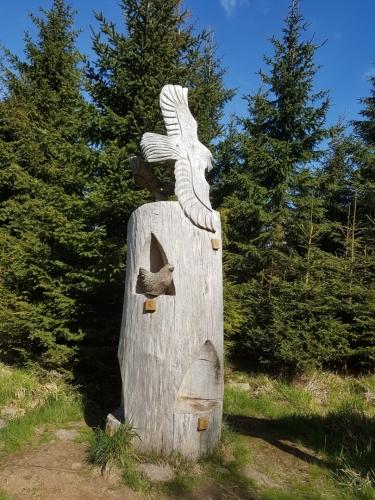 Dřevěné sochy jsou součástí NS Rysí skála.