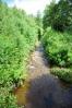 Lužný potok...