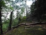 Stezka vede nad hranou prudkého kamenitého srázu...