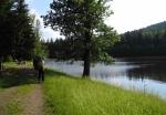 Velký rybník nás okouzlil. Zbytek dne a první brdskou noc strávíme u jeho břehů...
