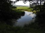 Dolní Padrťský rybník.