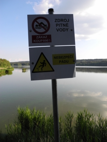 Cedule upozorňují na zákaz koupání a kde co jiného, nejvíc však nyní plavce odrazuje zeleně kvetoucí voda.