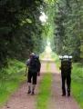Další cesta na Jahodovou horu  je znovu jako podle pravítka. Bude tou poslední brdskou.