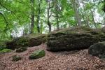 Vycházíme i na nedaleké skalní město s několika jeskyněmi u Kleinhennersdorfer Steinu.