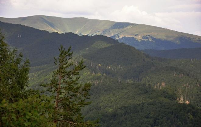 Velká Fatra s vrcholem Krížné.