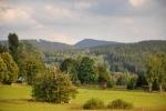Vrchol Sokola vystupuje nad okolními lesy.