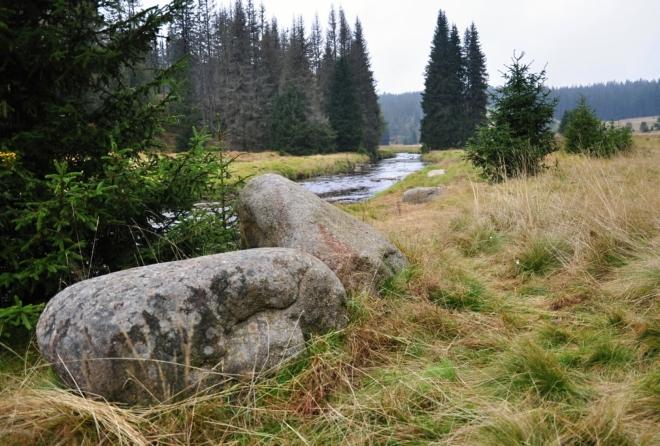 Krásné je okolí Roklanského potoka. Ještěže alespoň těch pár kilometrů jeho pouti k Modravě lze projít.