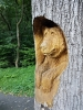 U lanovky na Pustevny nás uvítá jeden z mnoha zdejších medvědů. Většina z nich je sice takto neškodných, ale v Beskydech se toulají i jejich živí bratři.