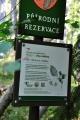 Chráněný přírodě blízký les na strmých a kamenitých svazích. Převažující bučinu doplňuje na vrcholu Noříčí hory smrk ztepilý a v dolní části rezervace javor klen.Podrost tvoří typické druhy kyselých bučin (bika lesní, třtina rákosovitá, papratka samičí), květnatých bučin (rozrazil horský, bažanka vytrvalá, kokořík přeslenitý) a suťových lesů.Hnízdí zde chráněné druhy ptáků, například holub doupňák, kos horský, jeřábek lesní, ořešník kropenatý. (www.mapy.cz)