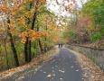 Koruny stromů a spadané listí rámují obrazy teplými barvami.