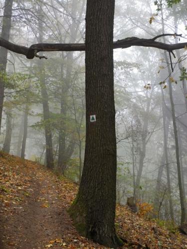 Křížová cesta k Vysokému Ostrému.