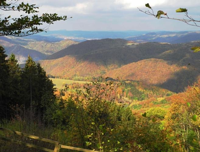 Údolí Lučního potoka klesá od Zubrnice k Malému Březnu.