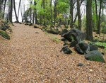 Kameny nad Byňovem...
