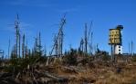 Okolí Poledníku je tím nejsilnějším důkazem, že experiment s nezasahováním proti kůrovci selhal. Žádné mladé stromky, žádný les, jen zmar a zkáza. Sem tam nějaký živořící stromeček, který nepřežije víc než pár let. Kde jsou všichni ti duhoví vítači divočiny? Opravdu si to takhle představovali?