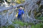 Na vlastní nebezpečí. Pokud by fičel vichr, cesta Jezerním hřbetem by byla nebezpečná. Nikdy nevíte, kdy jaký suchý strom padne.