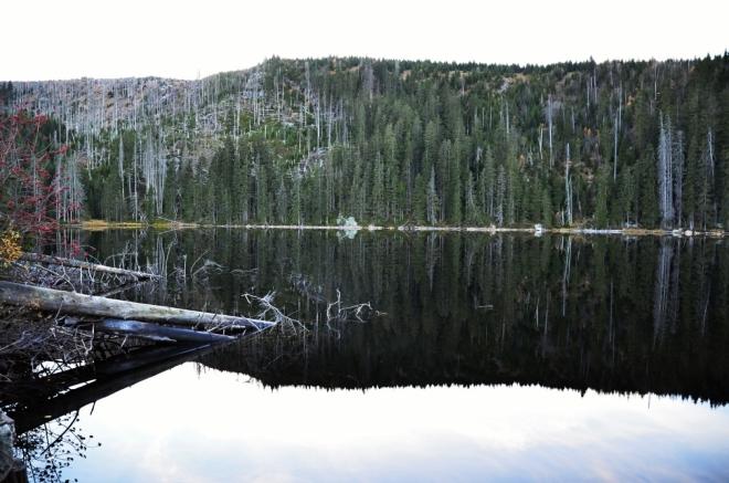 Skalka se odráží v černé jezerní hoře jako v dokonale vyleštěném zrcadle.