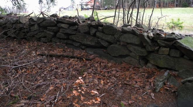 Okraj lesa u Nebahova zdobí kamenná zídka.