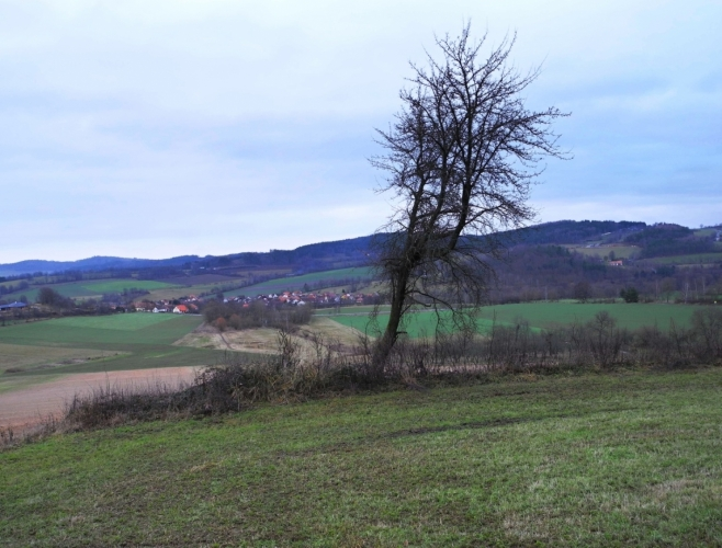 Vzdálené Vitějovice.