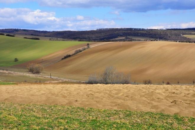 Moravské Toskánsko (Šardice).